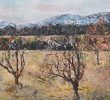 apricot orchard and pyrenees by christine vandenhaute
