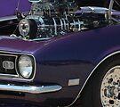 Color me Purple by Wviolet28