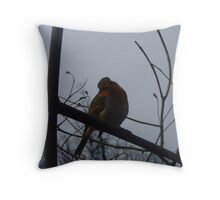 Robin - keswick, lake district Throw Pillow