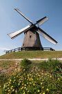 Windmill by Brendan Schoon