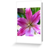 Mother's Day Flower Greeting Card