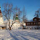 Aleksandrovsky Kremlin by Andrey Kudinov