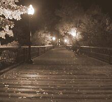 the old Iron Bridge by Joe  LaFata