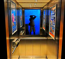 in the lift by Daidalos