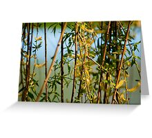 Willow branches with flowers Greeting Card