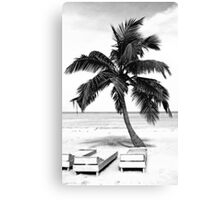 Jamaican Pallm in Black and White Canvas Print