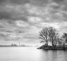View from Humber Bay Park by Steve Silverman