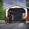 Amish Buggy and a Covered Bridge by Randall Nyhof