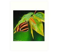 Butterfly #1 Art Print
