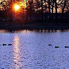 Mississippi Sunset by Thomas Eggert