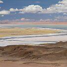 Atacama Desert by DianaC