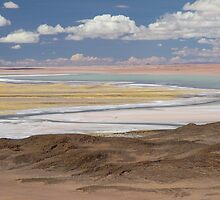 Tara Salt Flat by DianaC