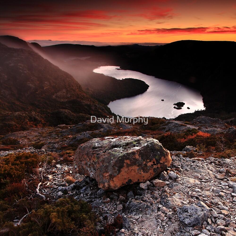 Dove Lake by David Murphy