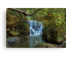 Leura Magic Canvas Print