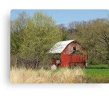 Little Barn in the Woods Canvas Print