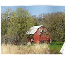 Little Barn in the Woods Poster