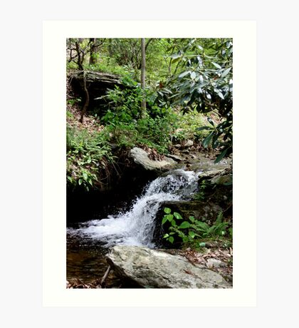 Cold Spring Water Falls Art Print