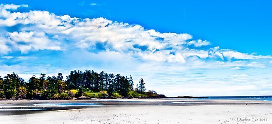 Witty's Lagoon Esquimalt BC Canada by Daphne Eze