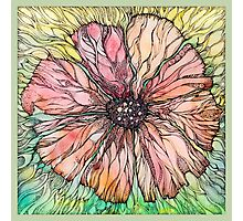 Red Poppy.Hand draw  ink and pen, Watercolor, on textured paper Photographic Print
