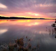 """""""Saturday Sunset"""" by Husky"""