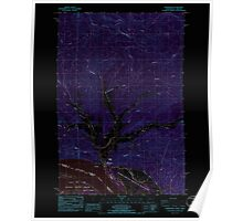 USGS Topo Map Washington Shamokawa 243680 1985 24000 Inverted Poster