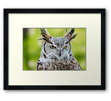 { so wise } Framed Print