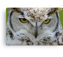 { up close and personal } Canvas Print