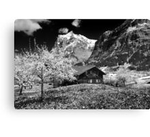 The swiss alps Canvas Print