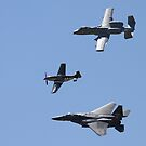 The Heritage Flight! by flyfish70