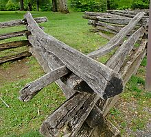 Split Rail Fence by Robert H Carney