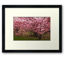 Vernal Enchantment Framed Print