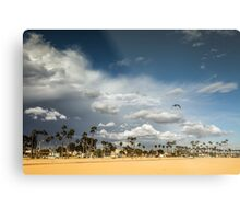 Sunny Day at the Long Beach with Palm Trees Metal Print