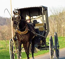 Amish Buggy Ride by Kam Johnson