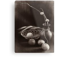 Still life with apples and garlic Metal Print