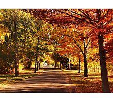 Autumn Alley Photographic Print