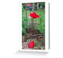 Red in the green Greeting Card