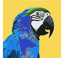 7 DAYS OF SUMMER- YELLOW PARROT LOVE Photographic Print