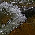 The Dunajec River images , pages from my visual diary .Poland.  פולין  by Brown Sugar . Views (189) Favorited by (1) Ok! ok! thanks ! by © Andrzej Goszcz,M.D. Ph.D