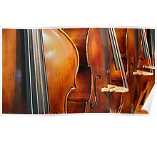 Music:  contrabass Poster