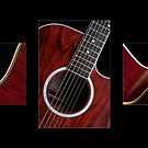 Guitar Triptych by Alan McMorris