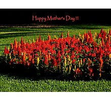 Happy Mothers' Day !!! ~ Part Two Photographic Print