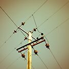 Power by Richard Pitman