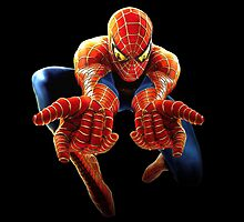 Spiderman by ReidDesign