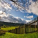 Orcas Island Fence Line by Bryan Peterson