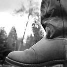 Western Foot by Robert  Miner