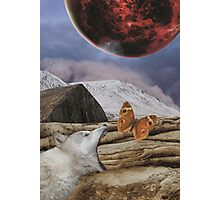 Under a blood red moon Photographic Print