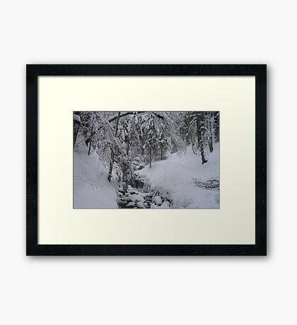 Arosa Frozen Brook Framed Print
