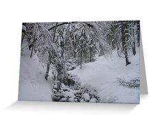 Arosa Frozen Brook Greeting Card
