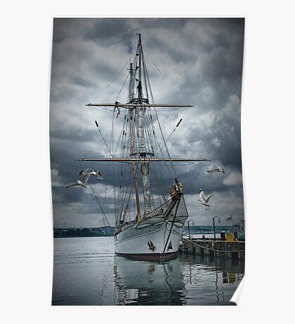 Tall masted schooner in Halifax Harbor Poster