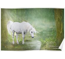 Wild Unicorn Poster